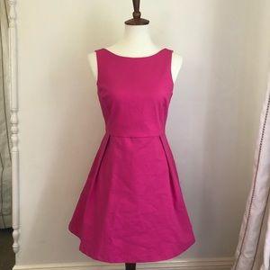 Zara Trafaluc Pink Fit and Flare Dress